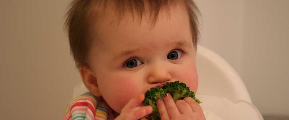 Baby Led Weaning, lo último en alimentación para bebés