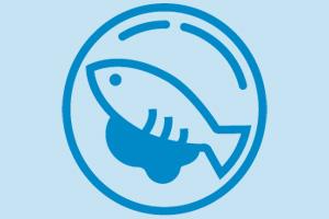 Plato de pescado para acceder a los menús especiales de colegios